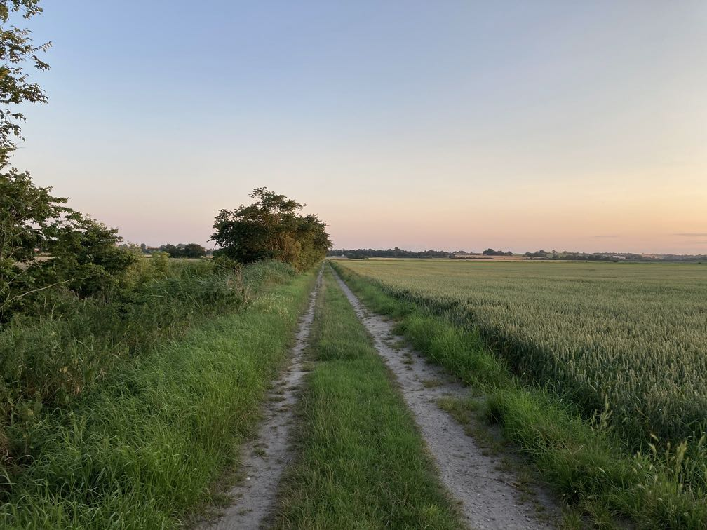 Country road. Evening sky. Green field.
