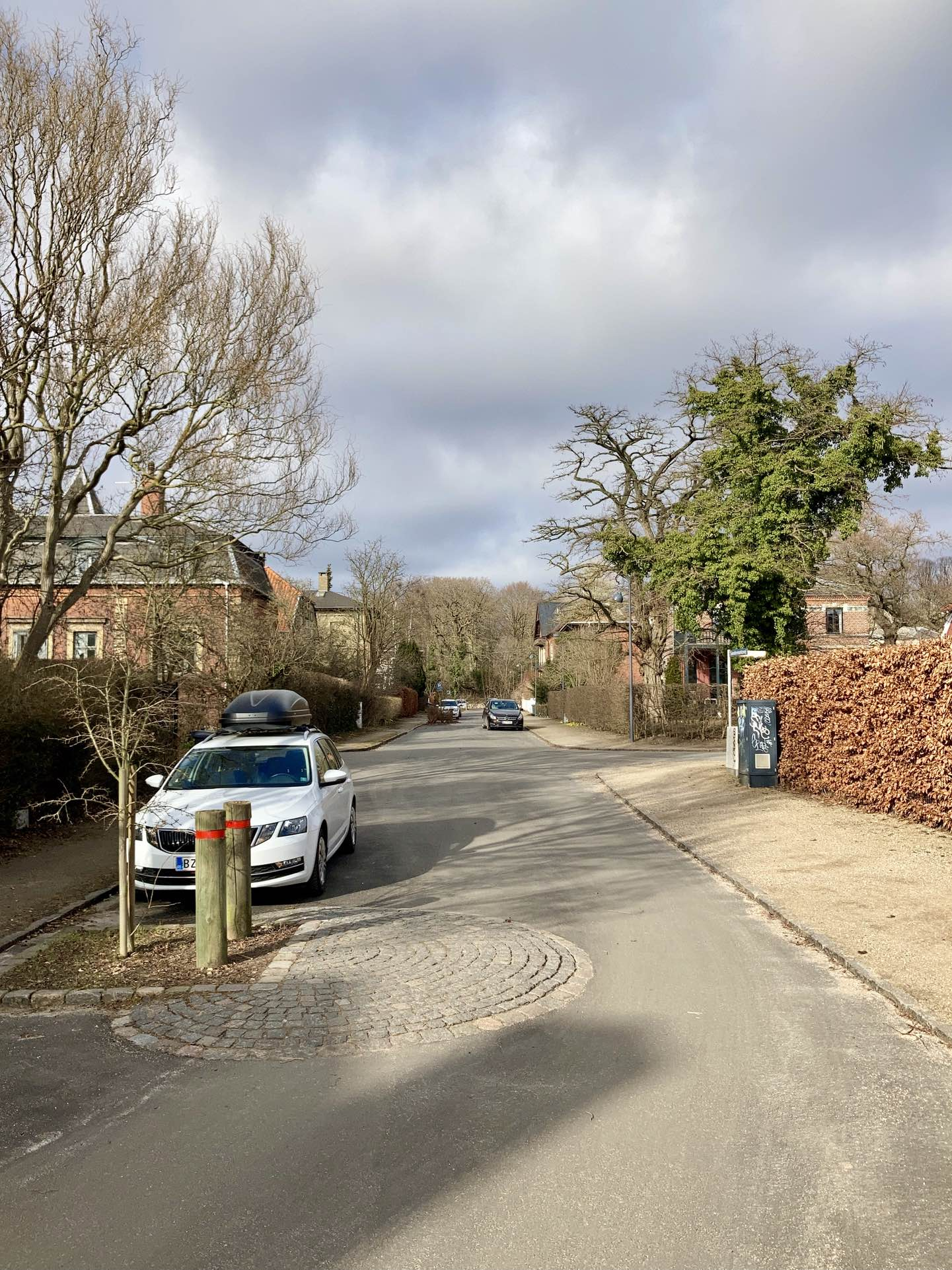 A nice residential area. Speed bumps. Quiet, peaceful. Afternoon sun against a darkish sky. The curves of the creeper that's consumed half of the dragon tree echoed in the graffiti that's nevertheless found it's way onto the electricity box.