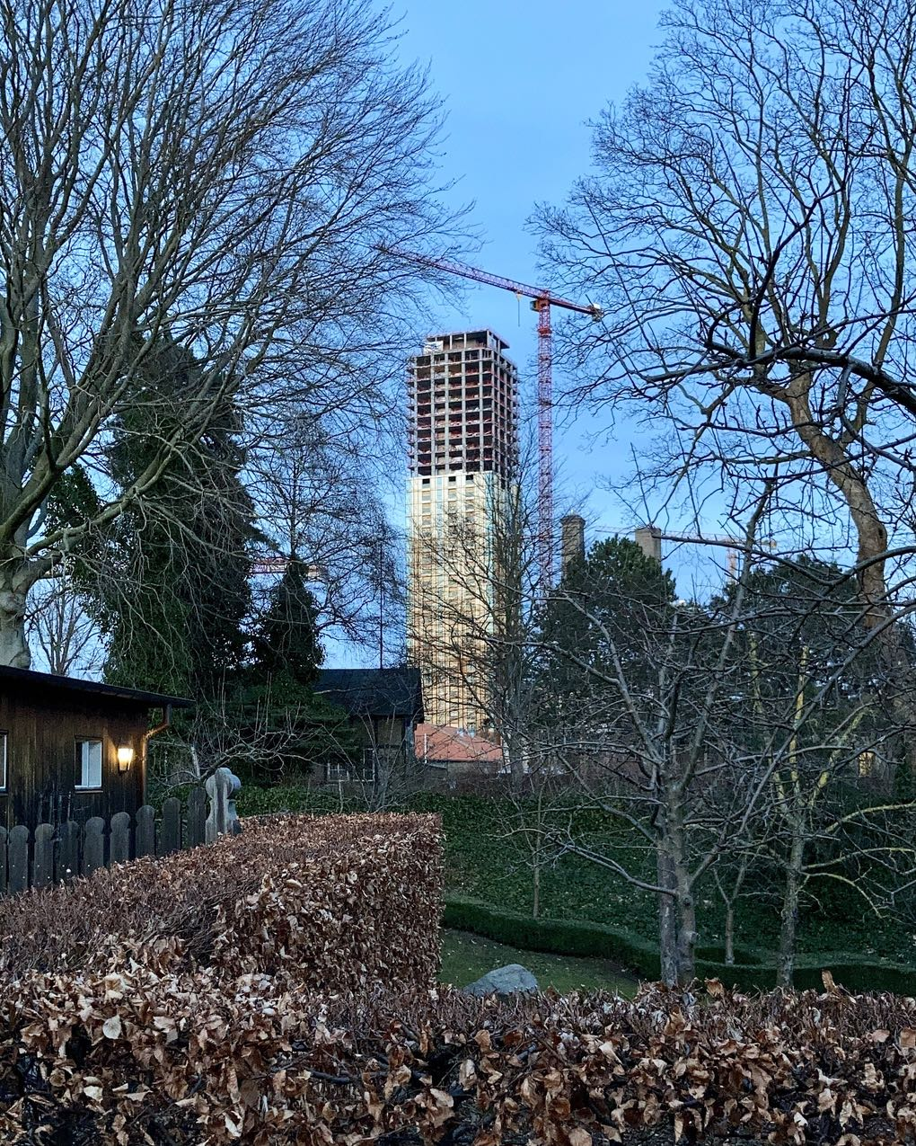 Another Carlsberg tower. Half-clad. Iron-clad. Framed by a bronchial network of tree branches, bare against the evening sky. The dried out leaves of a hedge in the front. A wooden house with a light on, to the left.